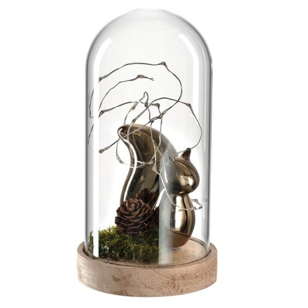 Mittel Leonardo Eichhörnchen Edy