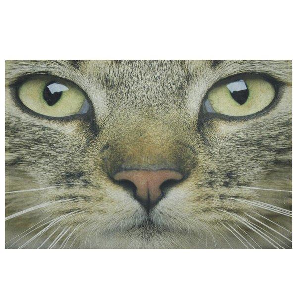 Fussmatte Tabby Katze Von Mars More